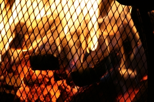 Na straży ogniska domowego