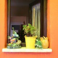 Na jakie okienne aranżacje postawić?